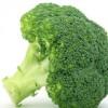 青菜西蓝花菜种子菜籽种籽 蔓陀绿西兰花