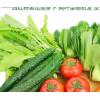 北京密云农家新鲜混合蔬菜西红柿黄瓜胡萝卜小白菜油菜番茄5斤装