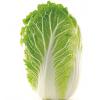 新鲜大白菜山东蔬菜农家现摘青菜黄心鲜嫩小白菜5斤包邮二到三棵